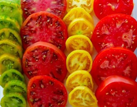 Как правильно собрать и сохранить семена помидоров 43